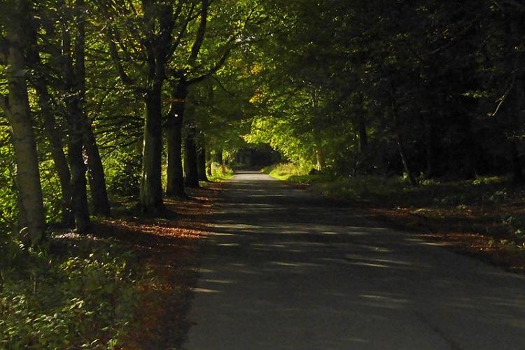 Lodge Walks september