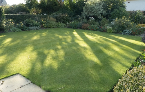 mown lawn september
