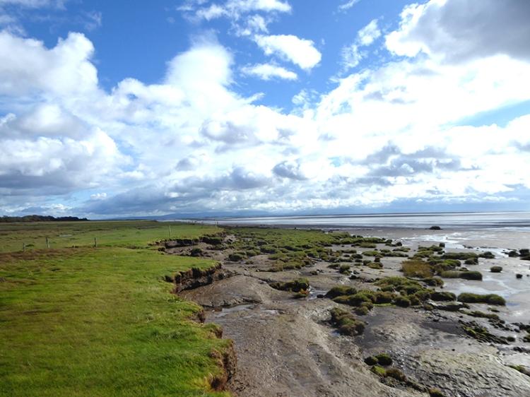 Nith estuary shore