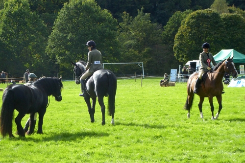 riders at show