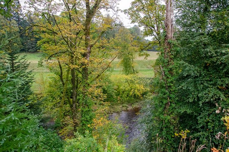 river at Broomholm
