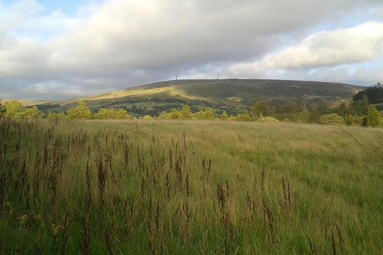 view of Whita