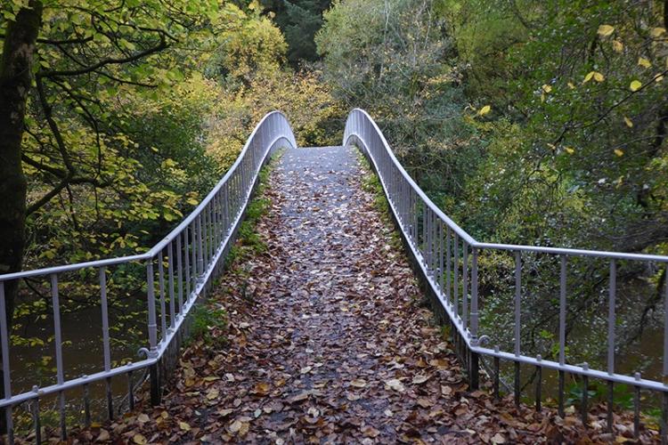 duchess brig in autumn