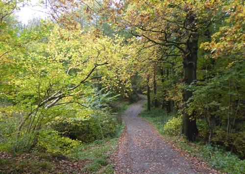 Easton's Walk in autumn