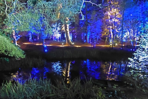 enchanted forest 4