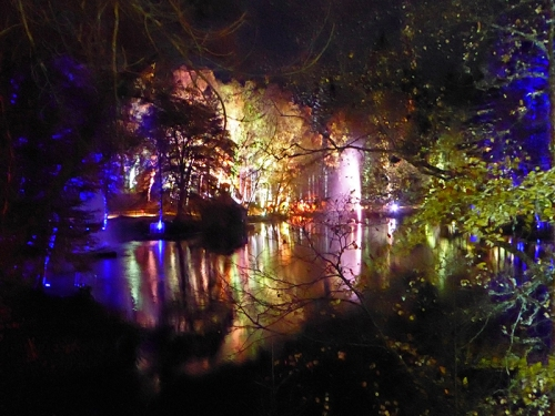 enchanted forest 5