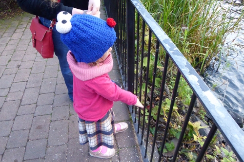 Matilda feeding ducks