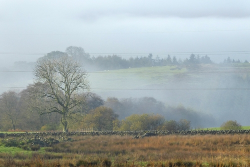 mist from Laverock