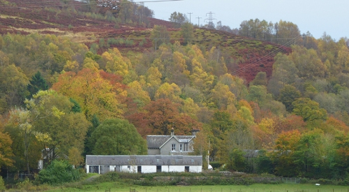 Murtholm in autumn