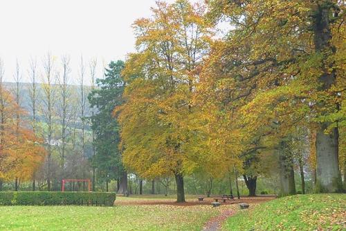 Park colour