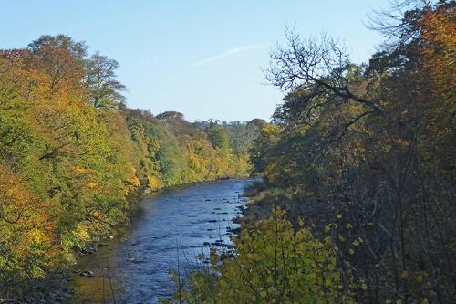 river at landslip
