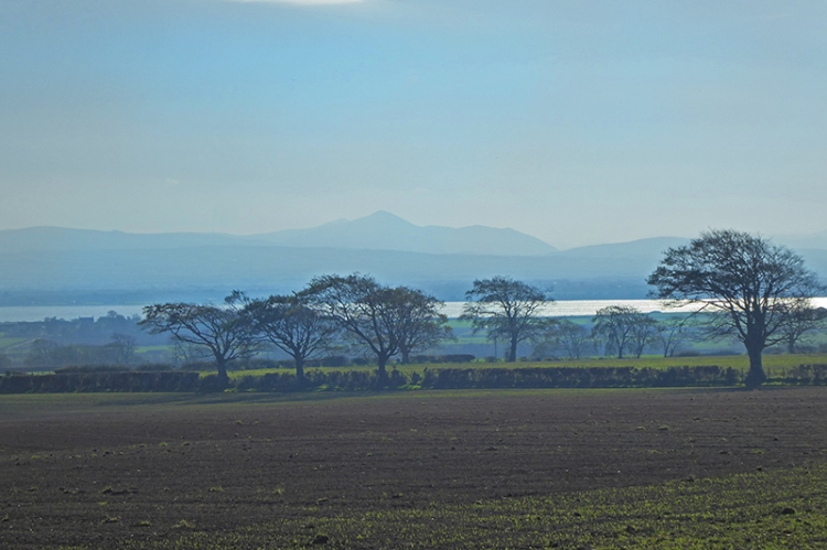view over the solway plain