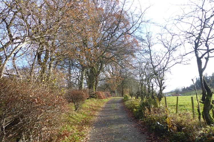 Easton's Walk November