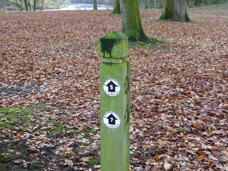 Langholm Walks post