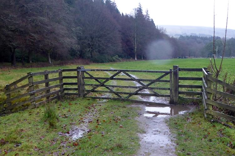 soggy castleholm gate