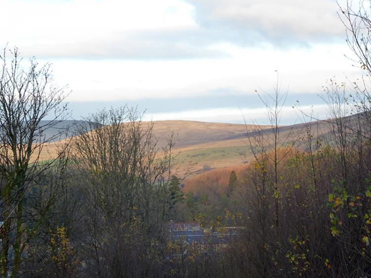 sun on the hills november
