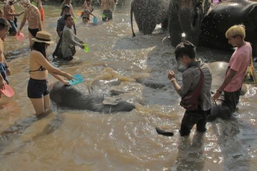 Thai washing up