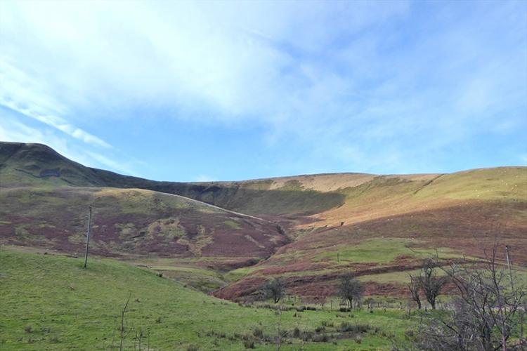 Fiddleton hills 2
