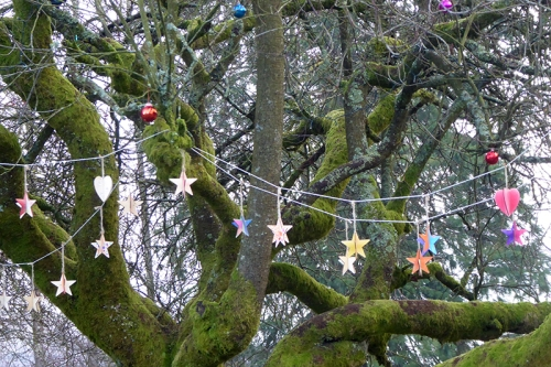 baubles in park tree