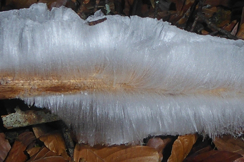 hair ice (2)
