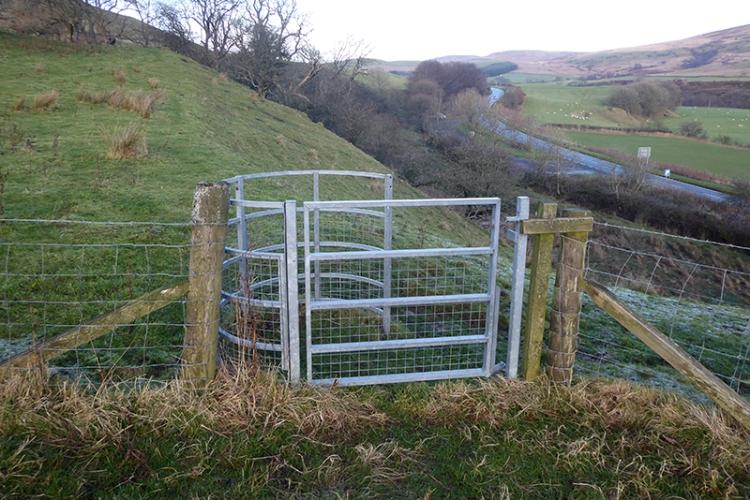 langholm walks gate