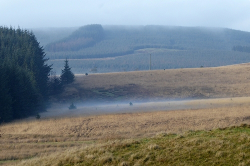 mist at bottom of hills