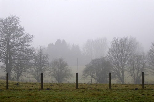 view from stubholm in mist