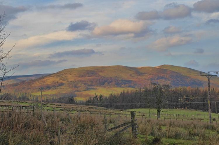 winter sunshine on Castle Hill