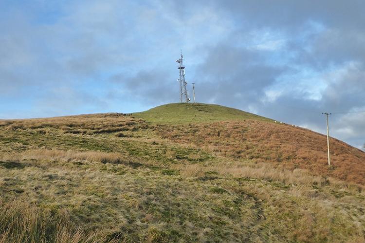 approaching the mast warbla