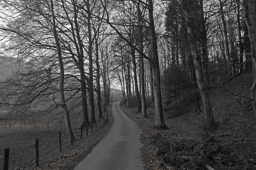 bandw phesant hatchery road