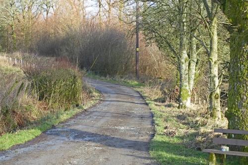 becks track