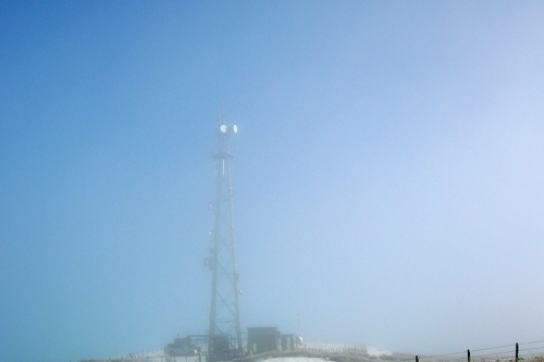 mist mast warbla