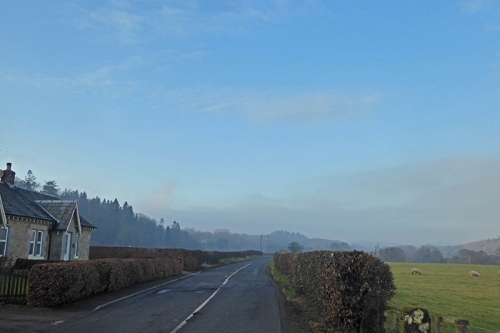 misty hollows road