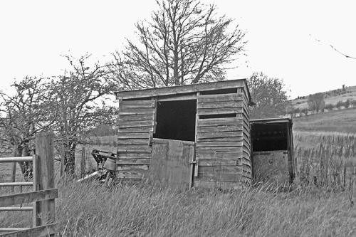 shed bw