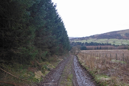 track from whitshiles