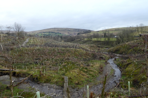 view down becks burn