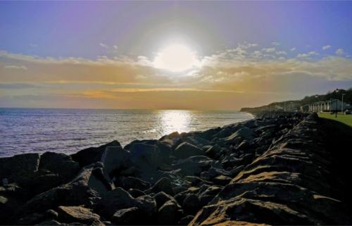 wemyss shore sunny