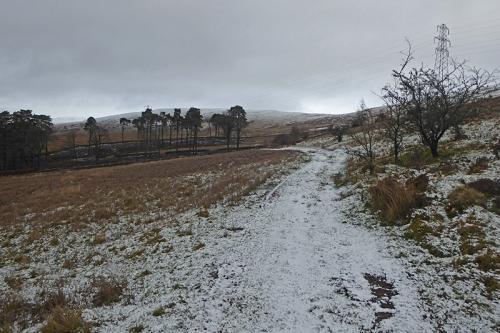 whita track snow