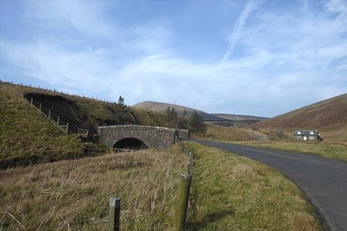 bridge below carrotrig