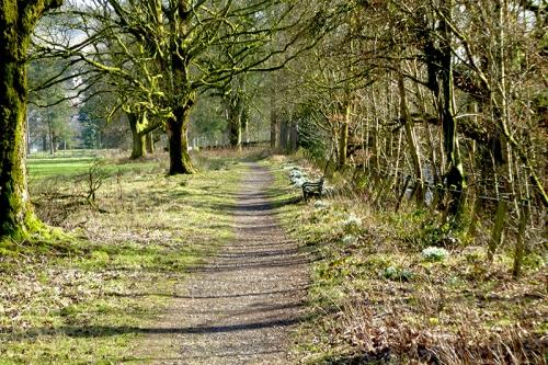 castelholm sunny feb