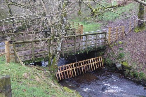 Irvine Hosue bridge