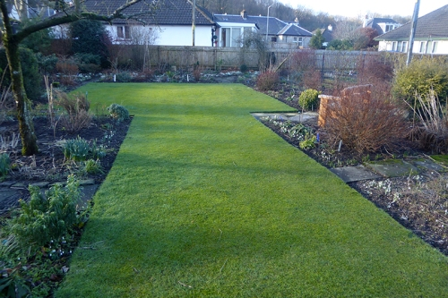 lawn wth no snow