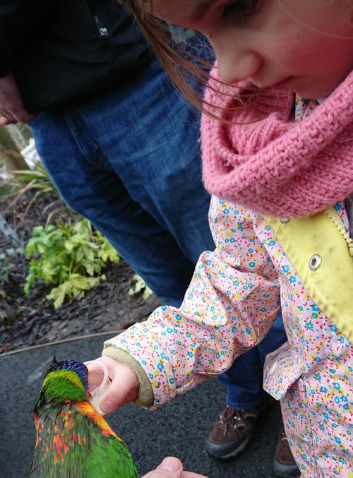 Matilda and a parrot