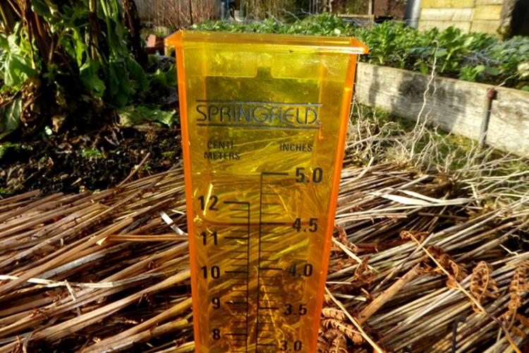 rain gauge Feb