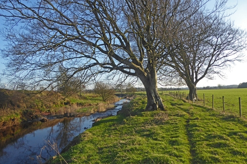 riverside walk Sark