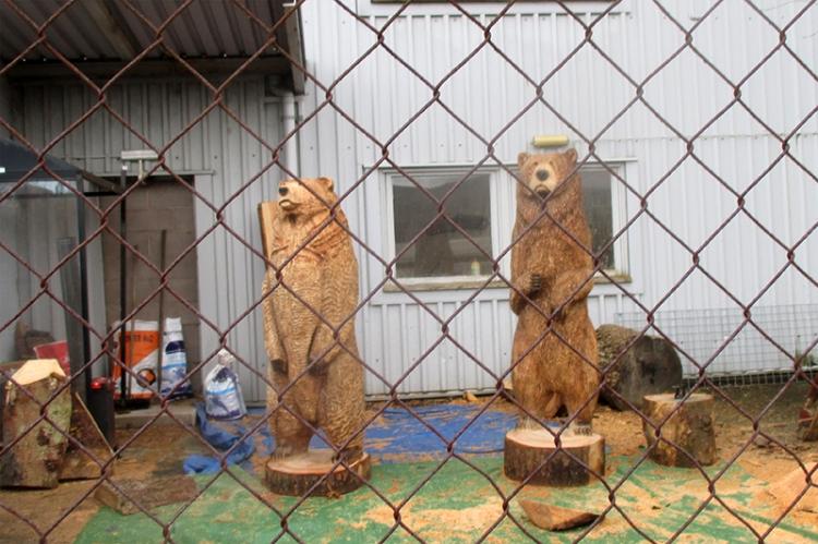 bears townfoot