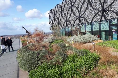 Birmingham library rooftop garden