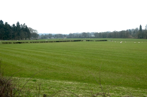 fields at Canonbie