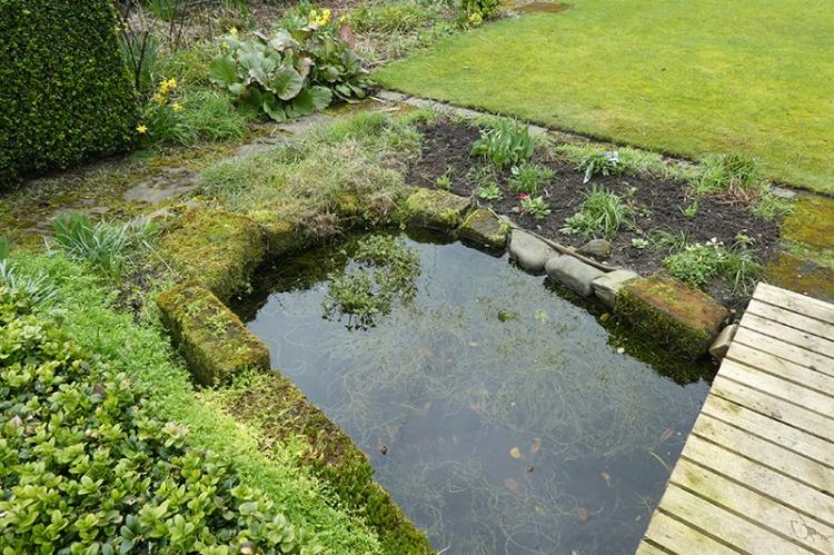 fullish pond