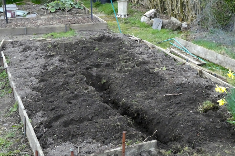 new bed with trench